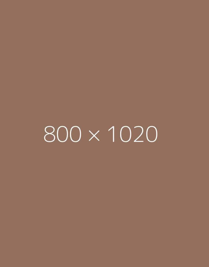 hongo 800×1020-c-ph