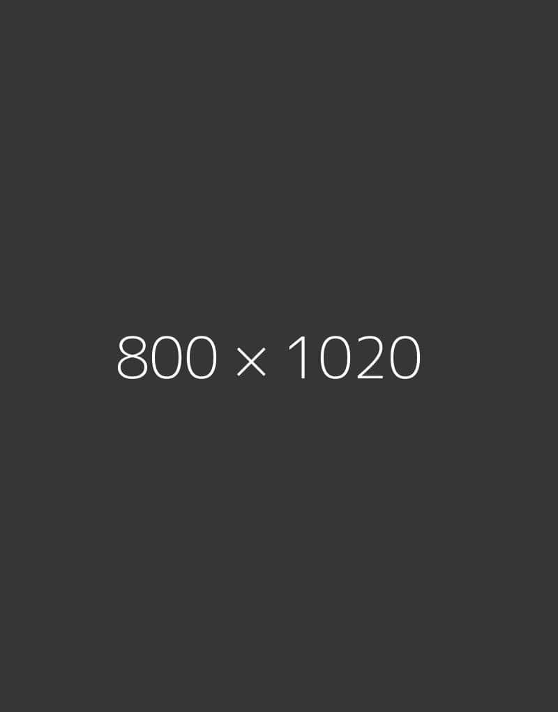 hongo 800×1020-d-ph